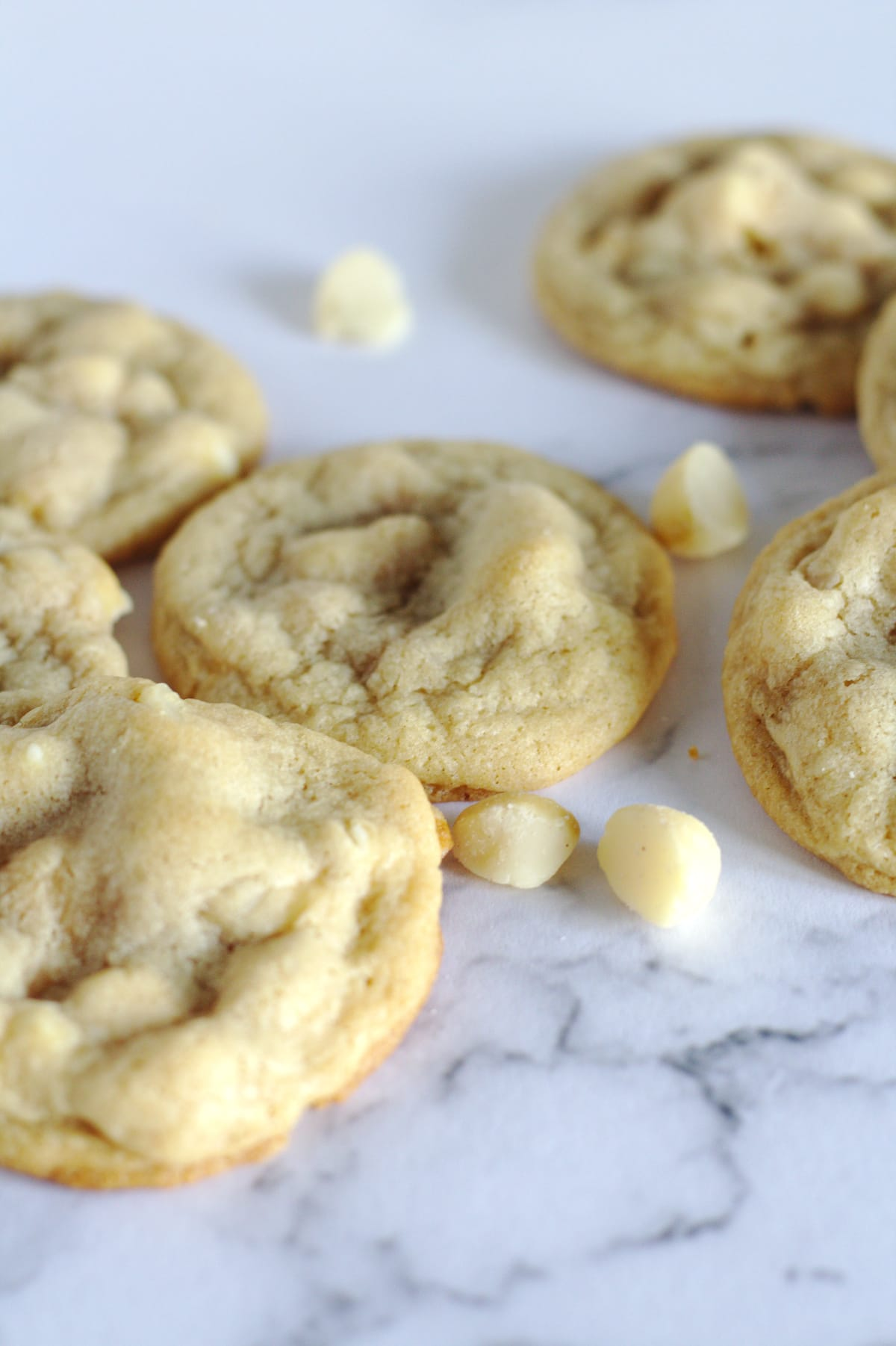 Cookies with white chocolate chips around them.